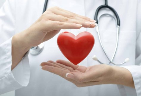 https://www.world-heart-federation.org/resources/advocacy-toolkit-uniting-global-efforts-fight-heart-disease-stroke/